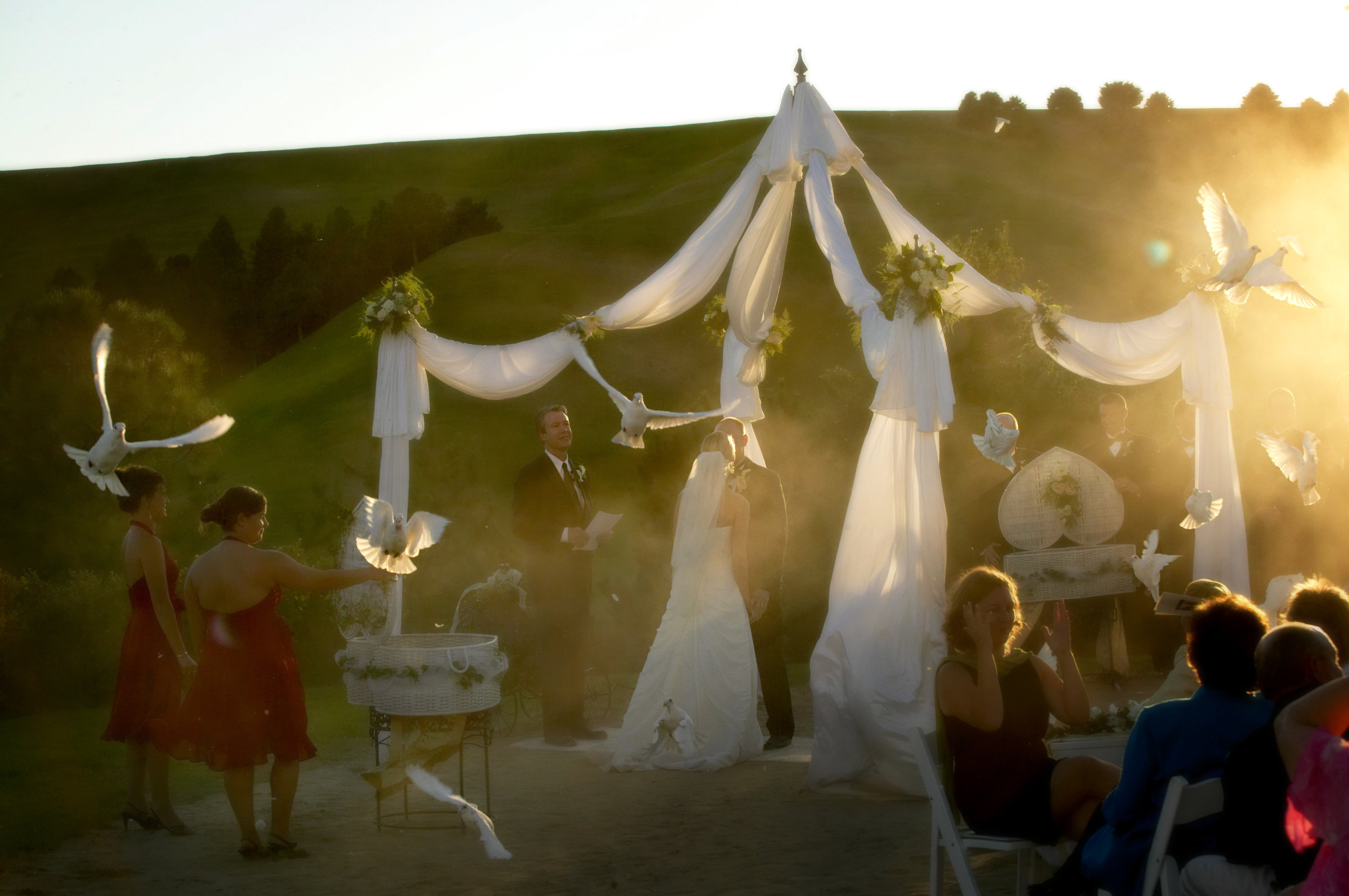 wedding - 308.jpg
