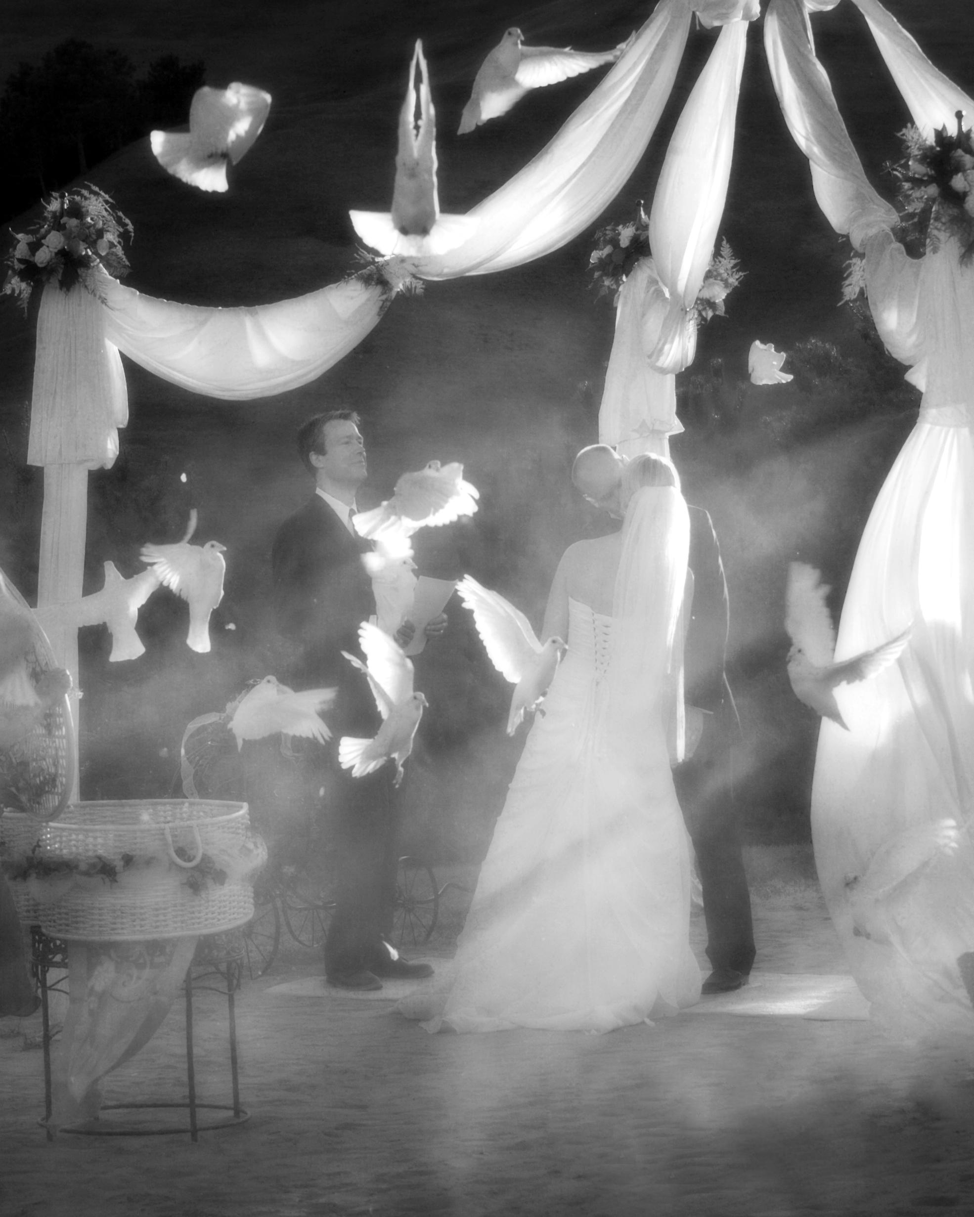 wedding - 303.jpg