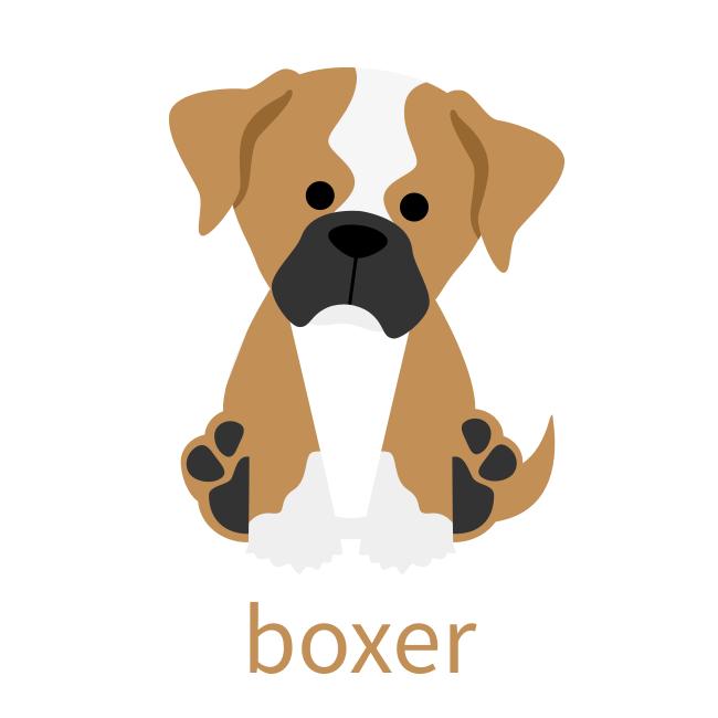 Boxer_3.png