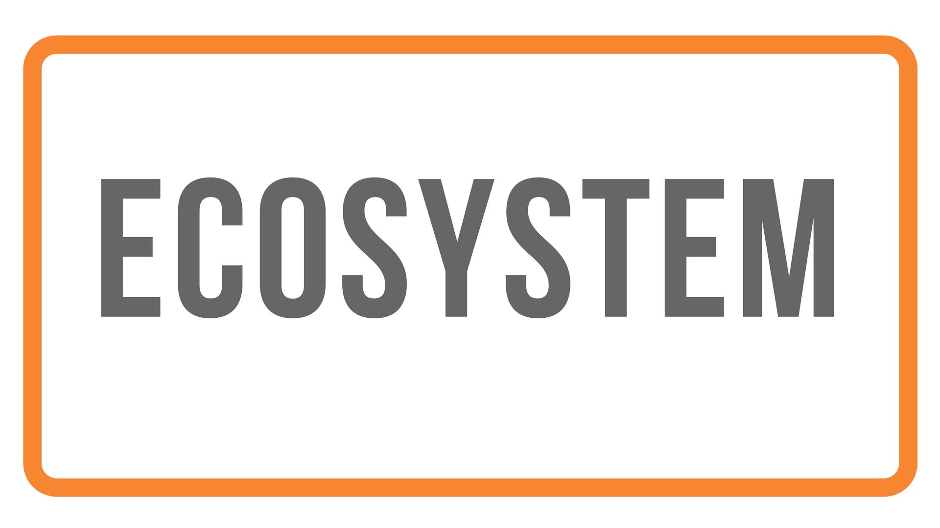 Ecosystem - Banner.jpg