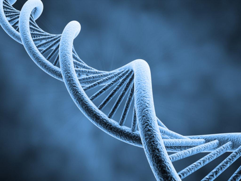 DNA Free radicals.jpg