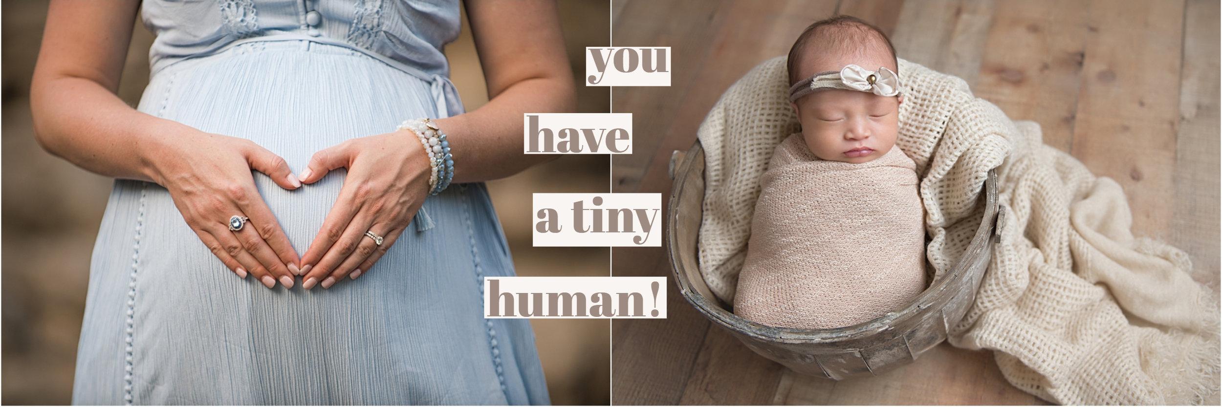 allen newborn photographer