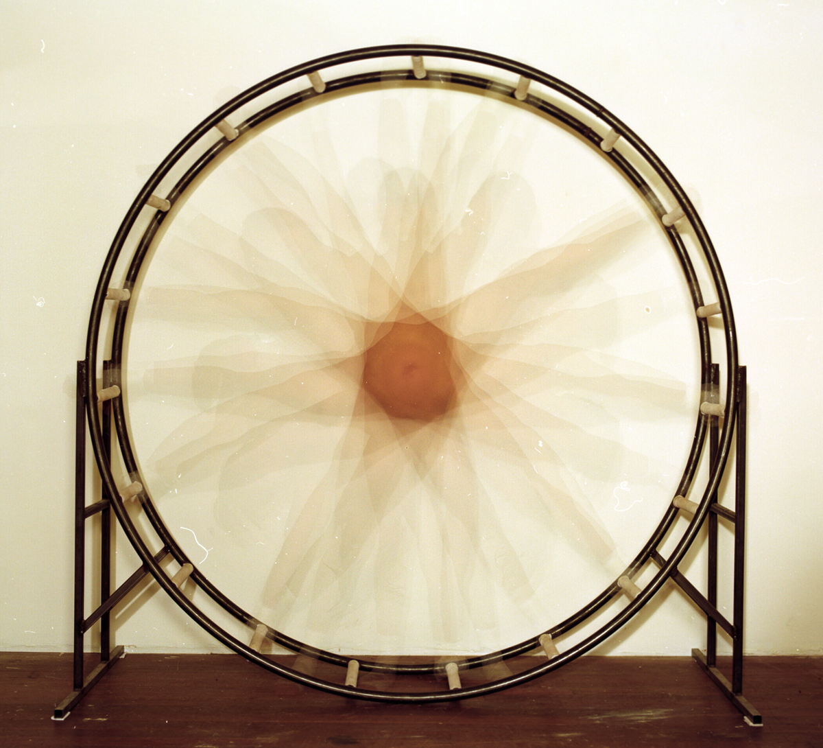 juliana_wheel_10.jpg
