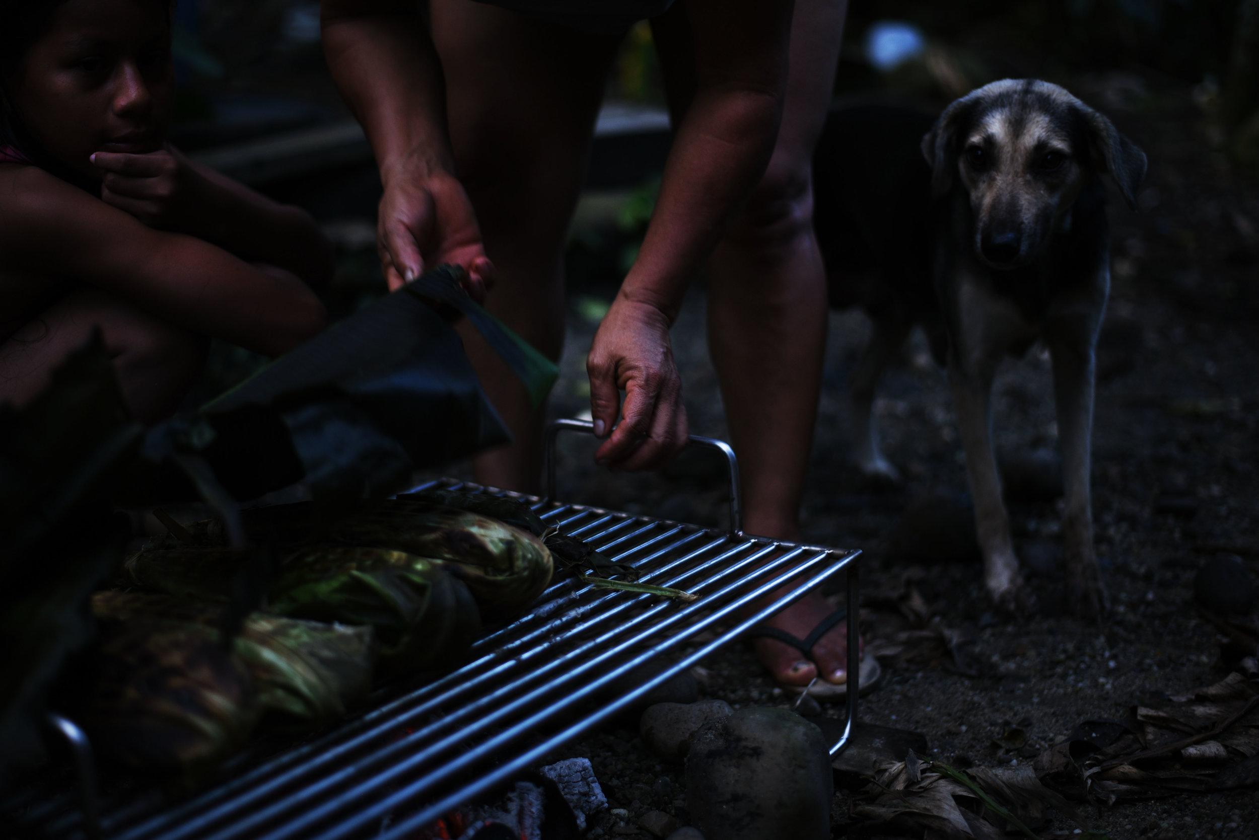 La Cena en La Amazonia//Dinner in the Amazon