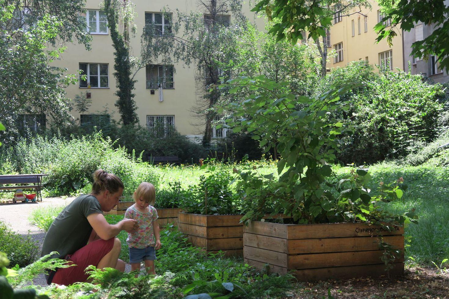 Aktualne.cz - Zahradničit v Praze je v kurzuCelý článek zde