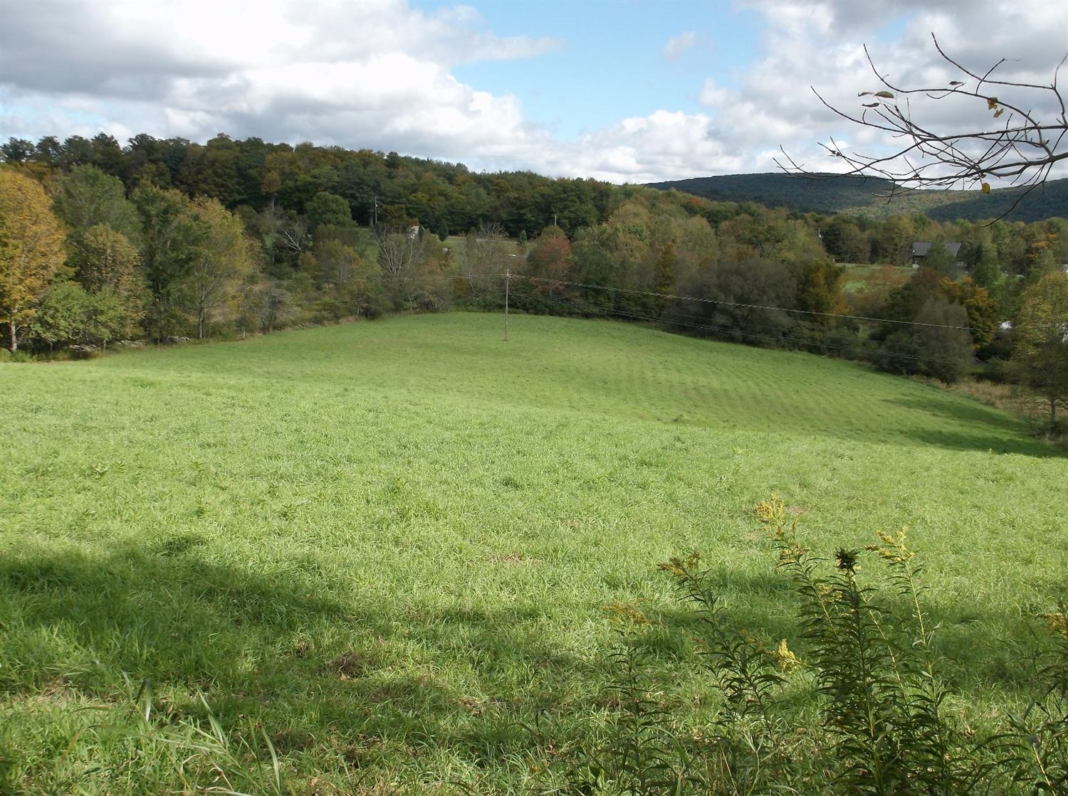 44,900 - 5.61 AcresPeaceful, Open Land and Hardwoods.Nice Location to Build a Home!
