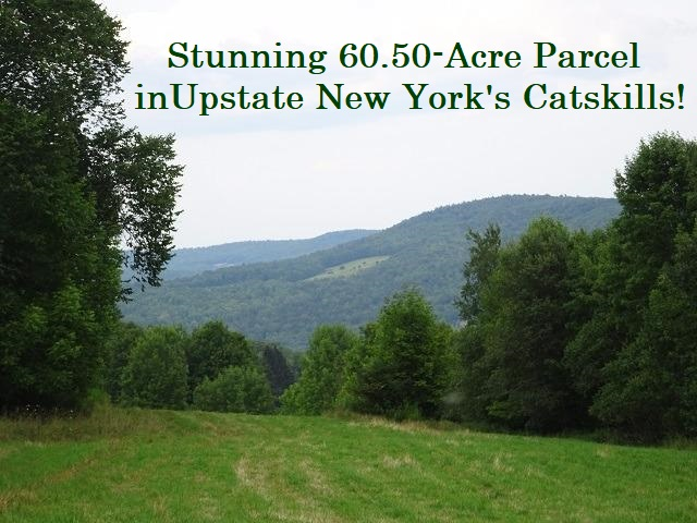 125,000 - Acres: 60.50Nice LayingWoods & MeadowsNice Views, Road Frontage