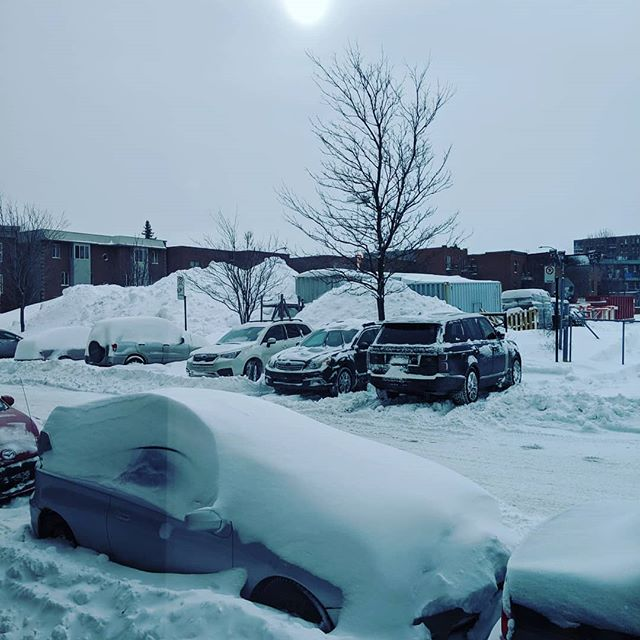 It's been so hard to get to work this morning... -20 degrees and too much snow... 🥶 . . . . . #gamedevlife | #ratloopcanada | #canada | #quebec | #montreal | #mondaymotivation | #snow #snowstorm | #ice | #freezing | #cold | #photooftheday | #picoftheday | #winter | #instadaily | #nature | #life | #instamood | #instalike | #games | #gamers | #indie | #indiestudio | #ratloop