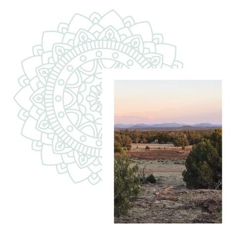 tta-landscape-mandala-2.jpg