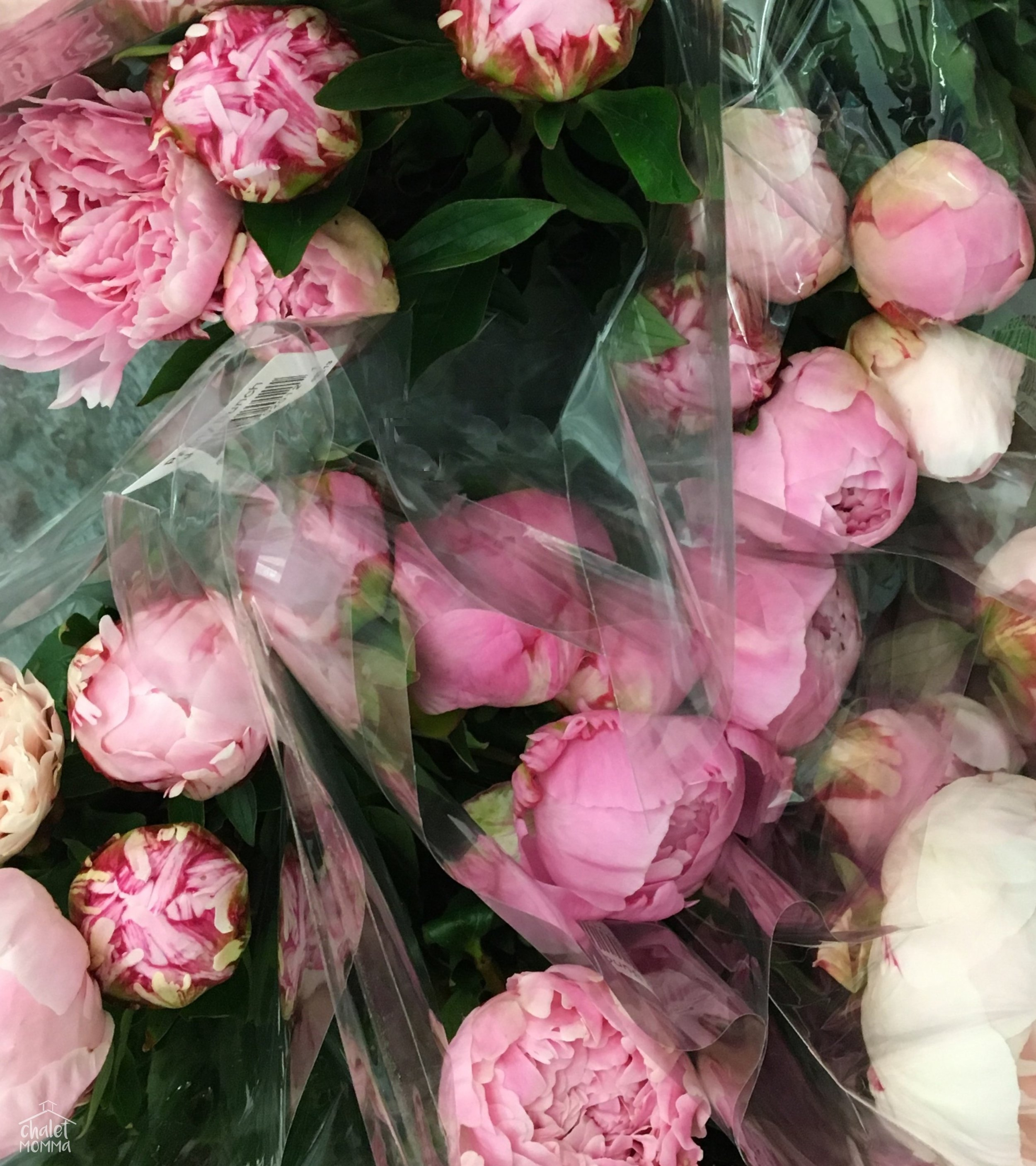 basket of peonies  2.jpg