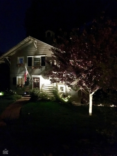 house with cherry blosson.jpg