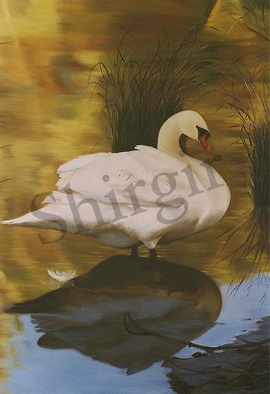 15_1 Swan Final big copy.jpg