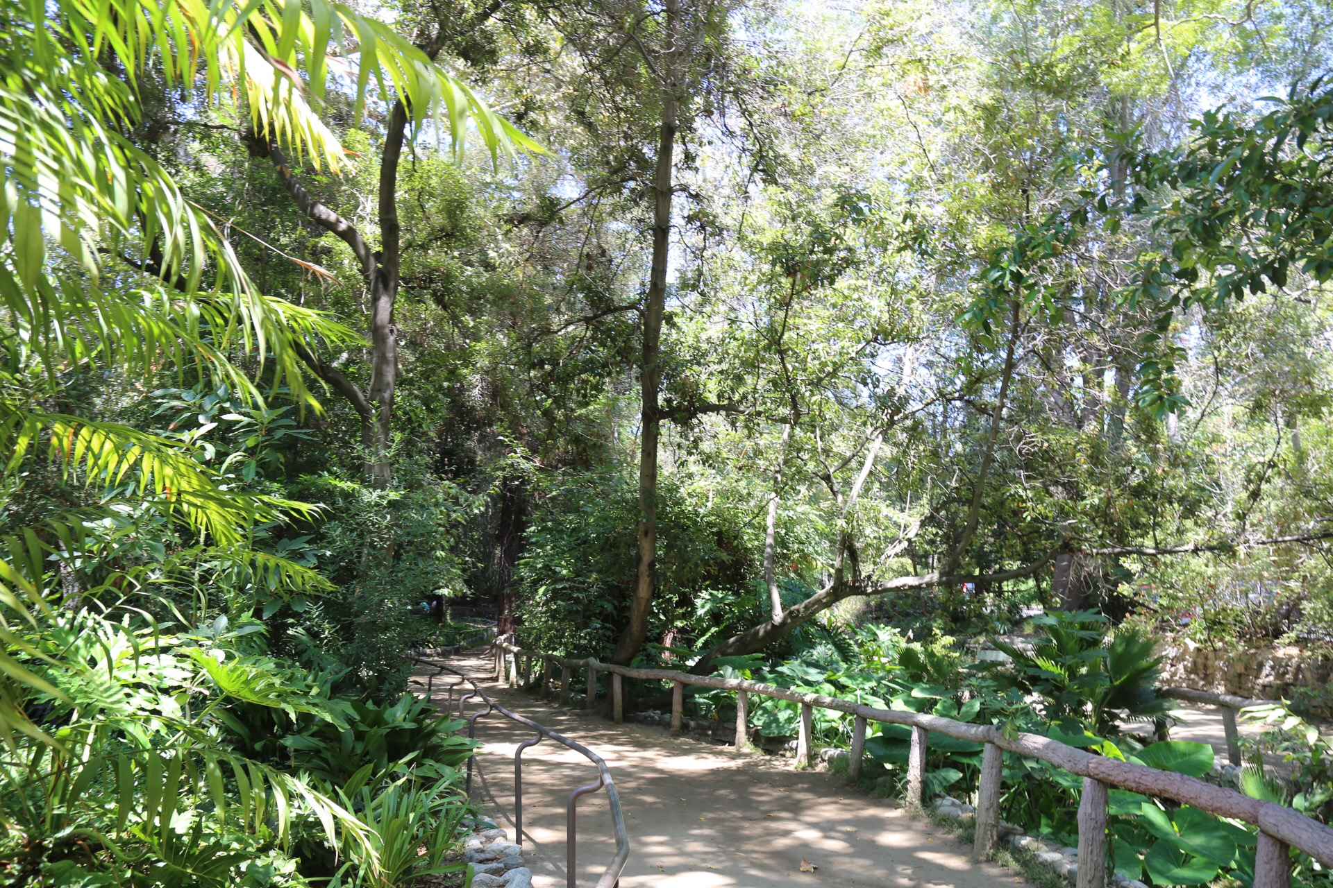 Ferndell Trail at the Western/Los Feliz Griffith Park Entrance.