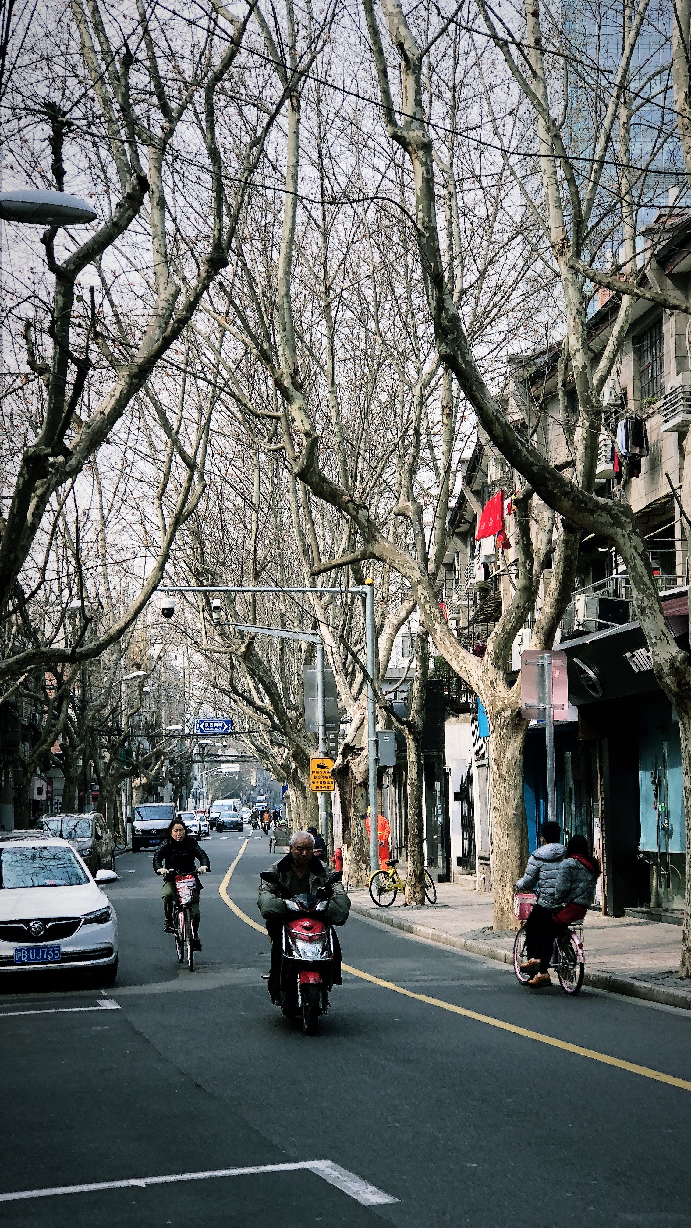 Former French Concession in March.