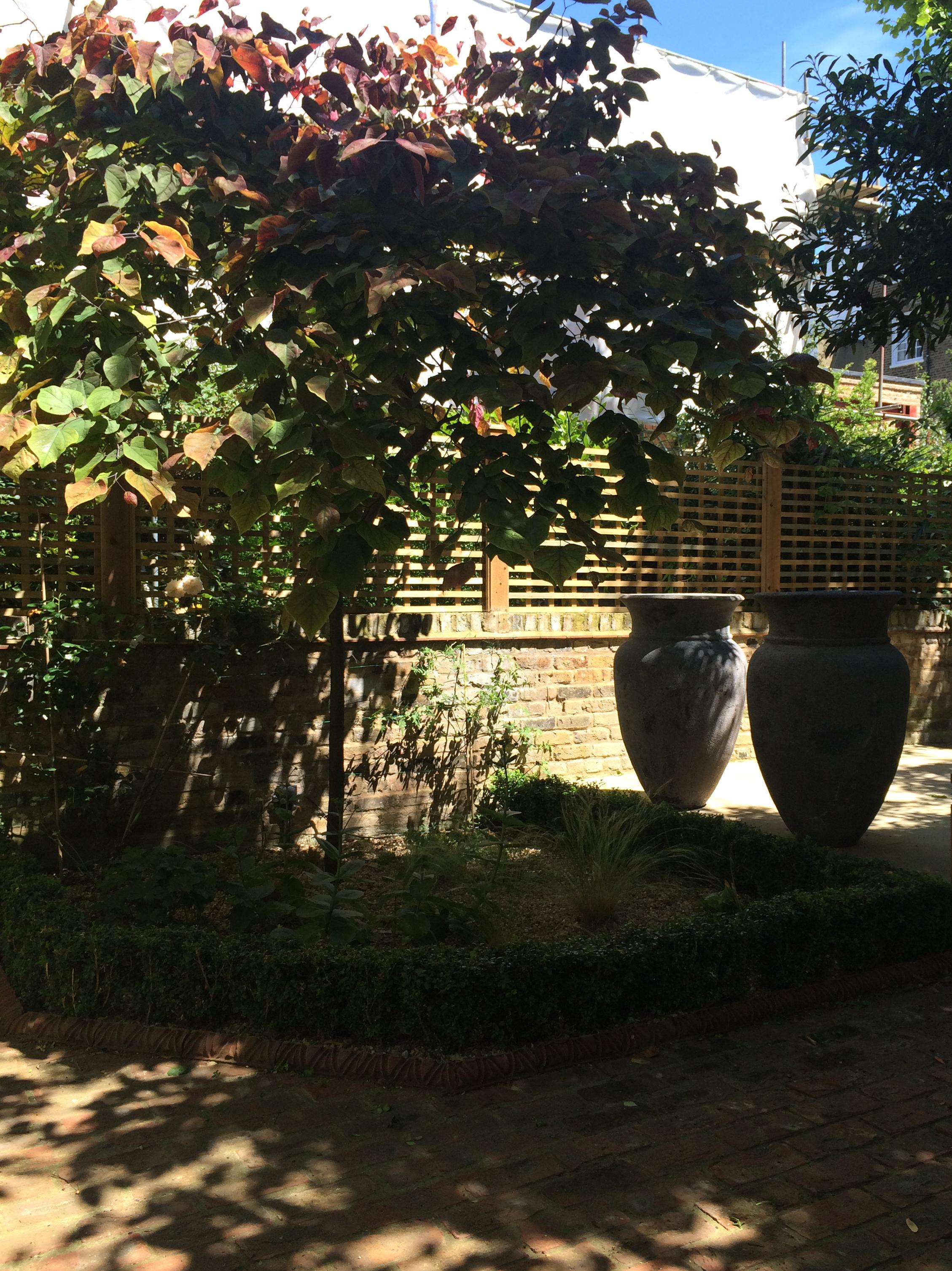 Chalcot-Square-Primrose-Hill-Urns-Cat-Howard-Garden-Design.JPG