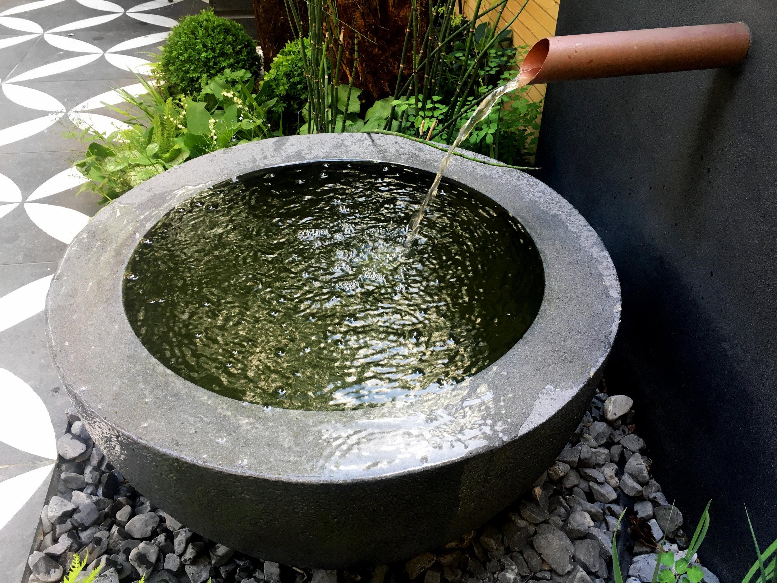 Primrose_Hill_Water_Bowl_Cat_Howard_garden_design