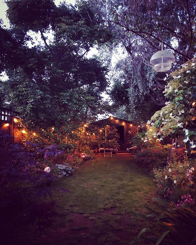 My garden . . #home #mygarden #love #happy #weekend #pottering