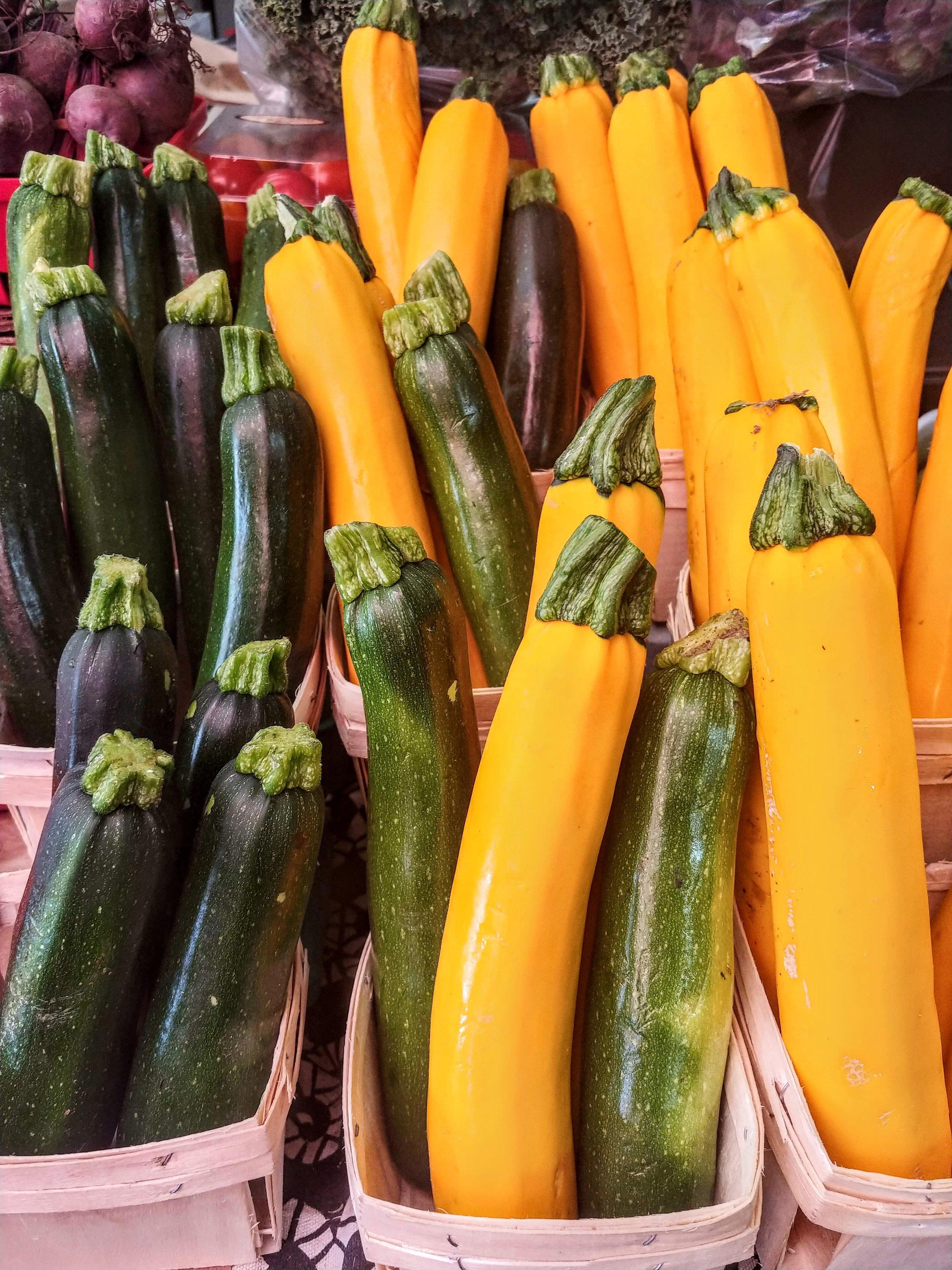 Zucchini & Summer Squashes