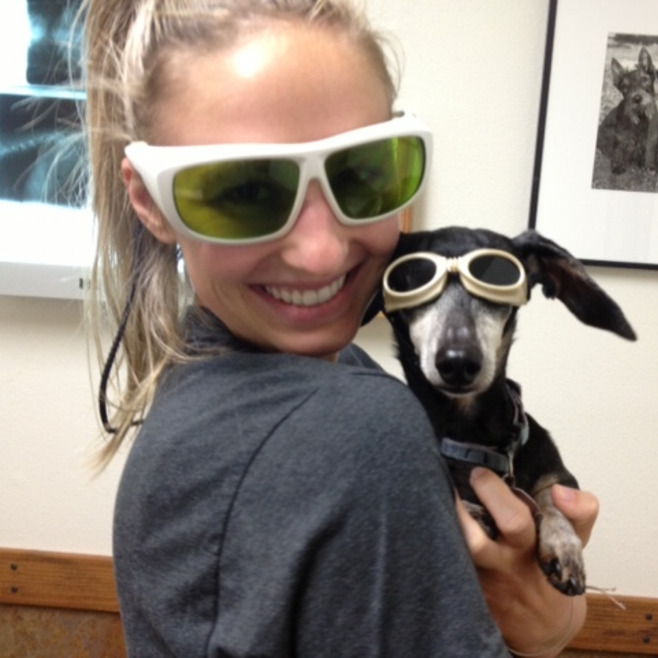 Vet technician in protective eye glasses holding small daschund with eye glasses