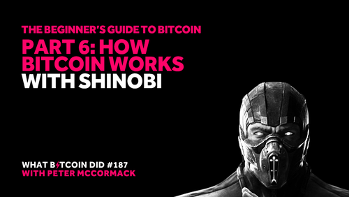 Part 6: How Bitcoin Works with Shinobi