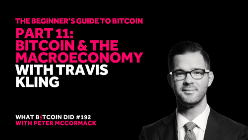 Part 11: Bitcoin and the Macroeconomy with Travis Kling