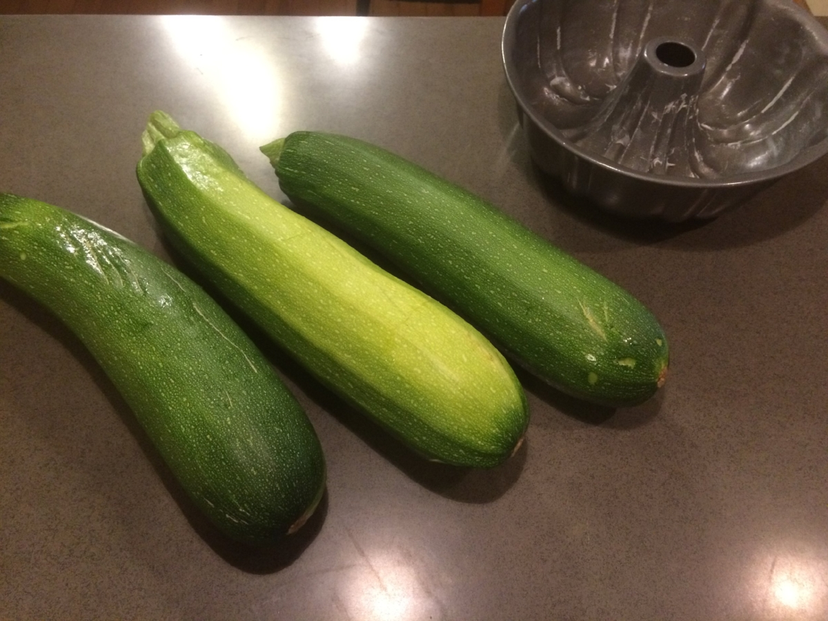 I remembered to plant just ONE zucchini in the garden this year...