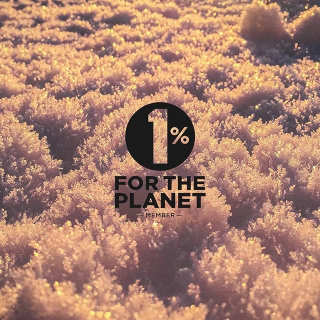 We made a commitment. 🌎 True North Travel is a proud member of @1PercentFTP . We recognize that we have a responsibility #forourplanet and are committed to creating a positive impact. Because if this, we donate 1% of our sales to #nonprofits focused on #environmental issues.