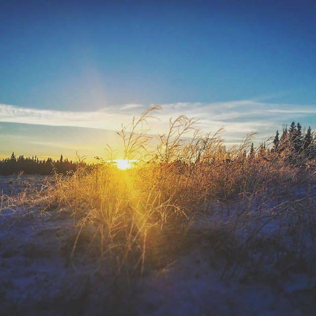 Those winter sunsets got me like 😌 🌅