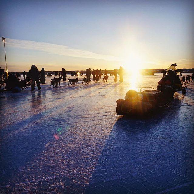 Enjoyed a chilly weekend in Bethel, Alaska at the Kuskokwim 300 dogsled race.🏁 🐕