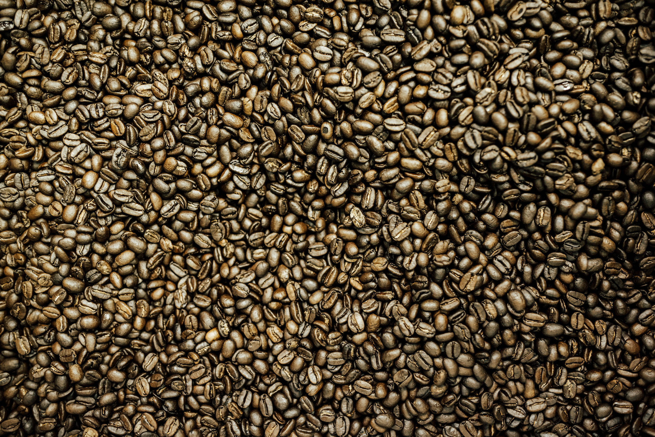 Feel Better about  your coffee! - Always 1lb Always freshly roasted!$16.75