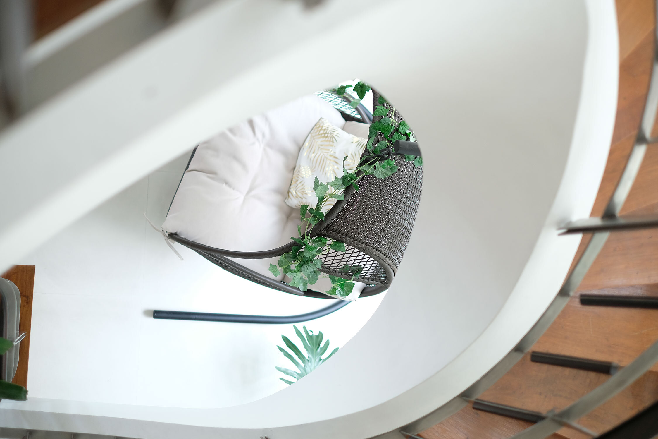 Modern Tropical Home