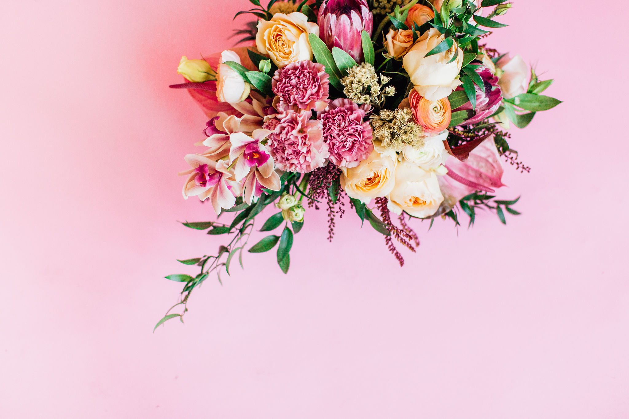 Let There Be Florals! - May is a month where mother nature likes to strut her stuff and we are here for it! To honor all of the blossoming beauty going on outside, we wanted to direct your attention to some of our fabulous floral party decor available to shop at Confetë.