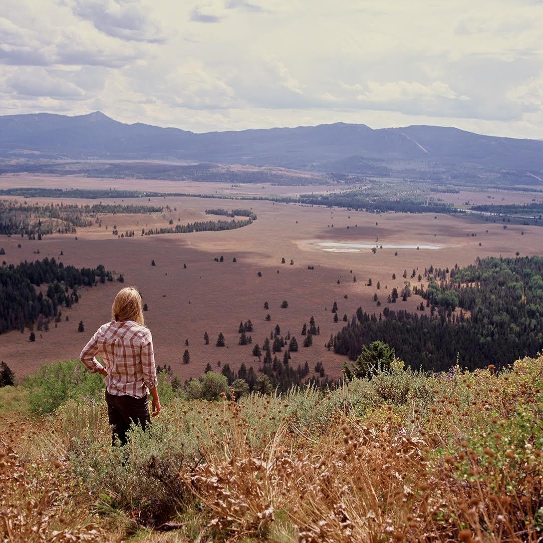 Hill Tetons Gold