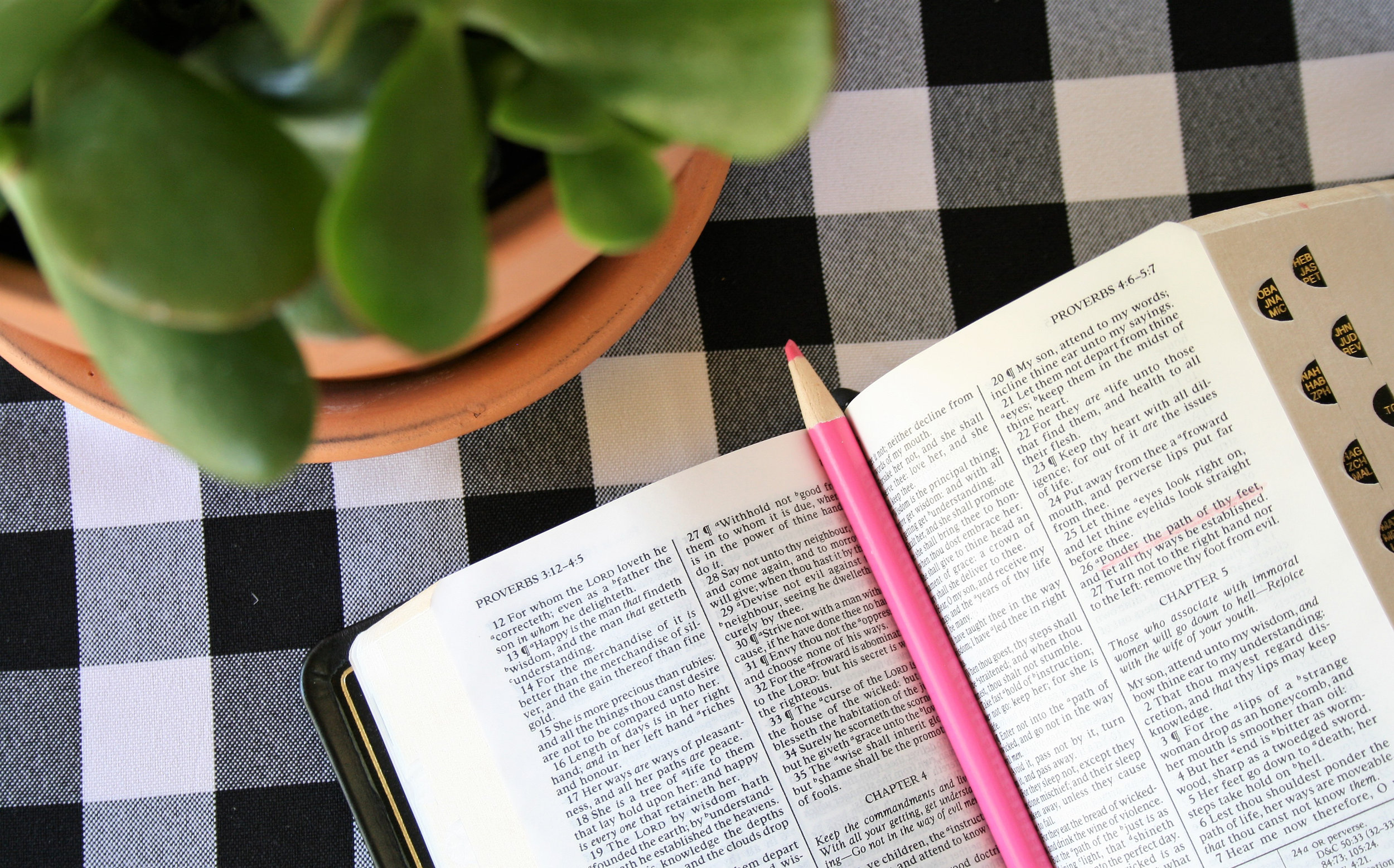 TSS_Scriptures.jpg