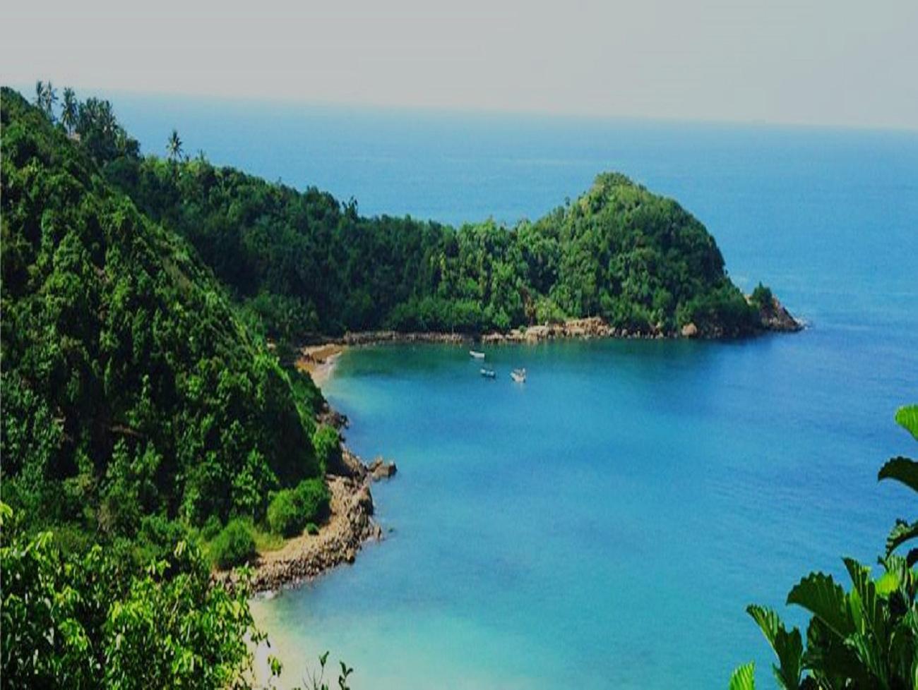 Unawatuna Beach Jungle -