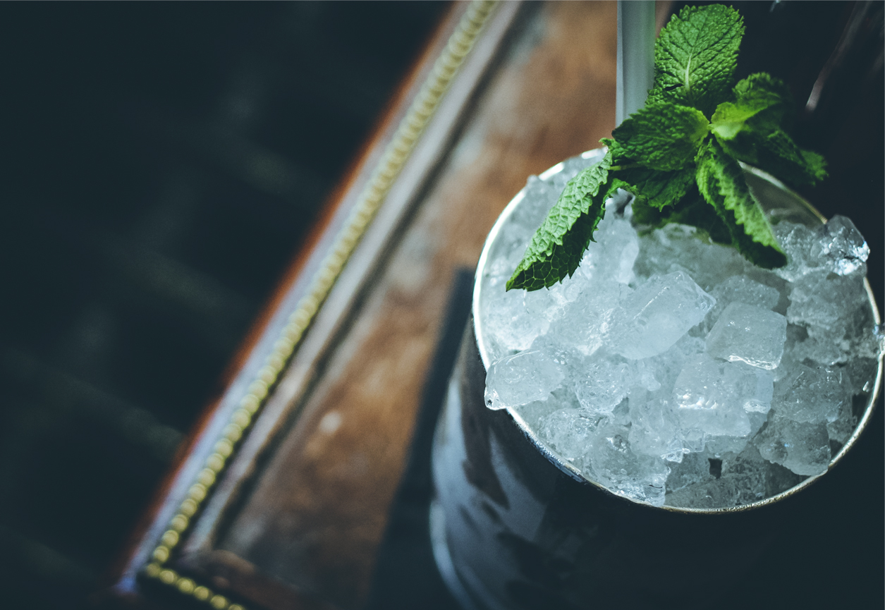 mint julep cocktail.jpg