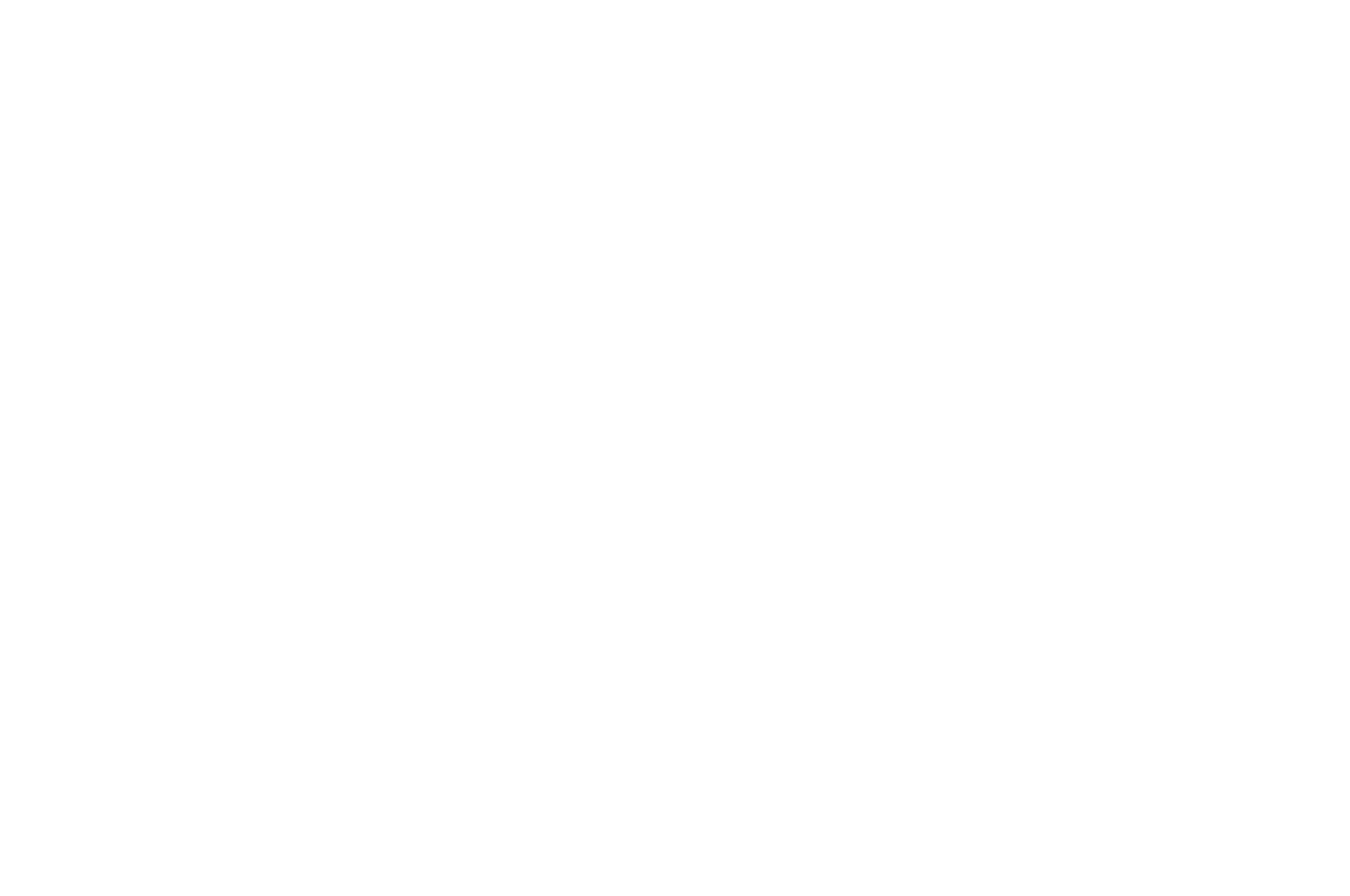 Best International Short Film Silver Award - TORONTO AFTER DARK FILM FESTIVAL - 2018 (1).png