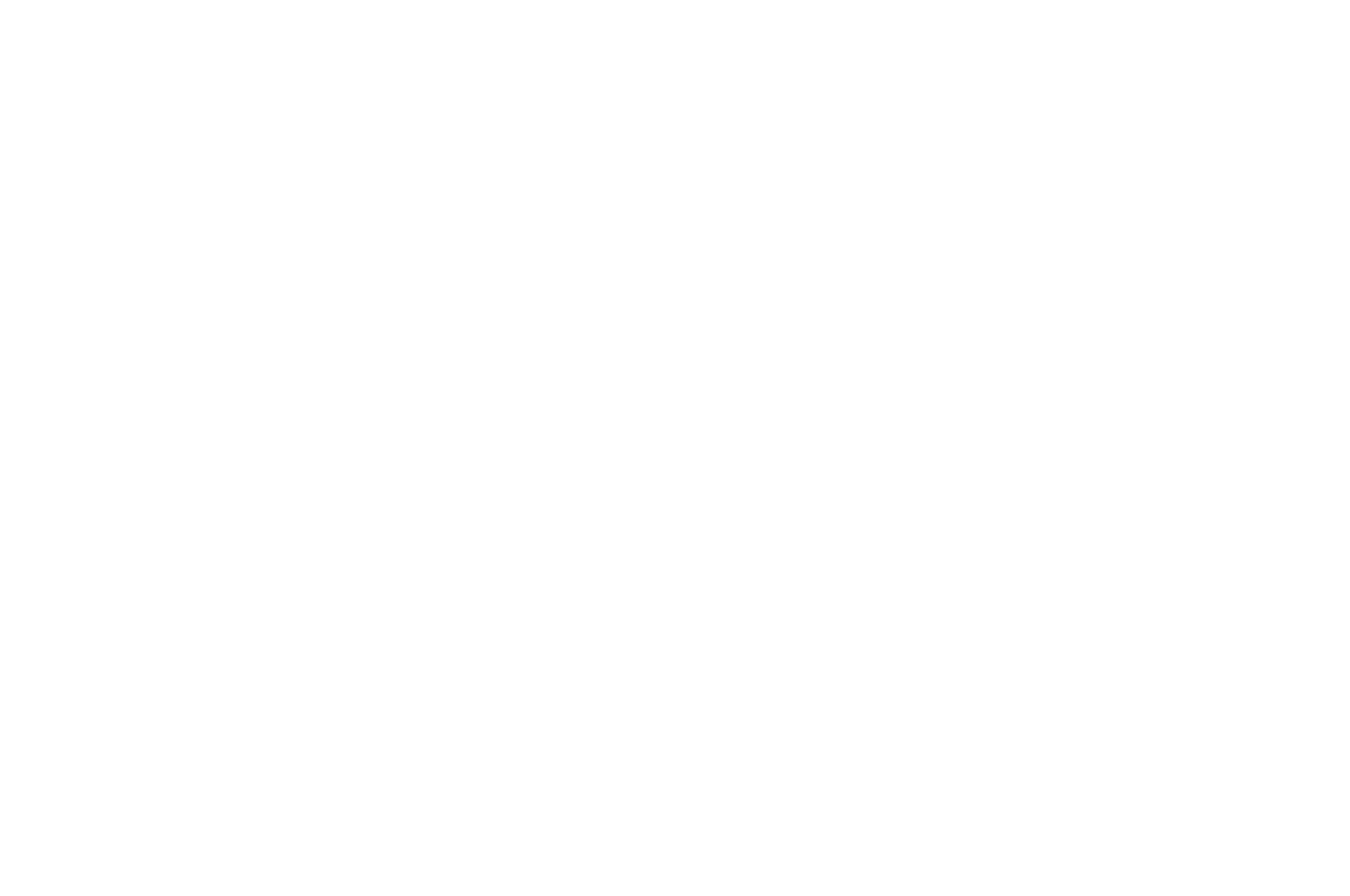 OFFICIAL SELECTION - PIFFF Paris International Fantastic Film Festival - 2018 Black.png