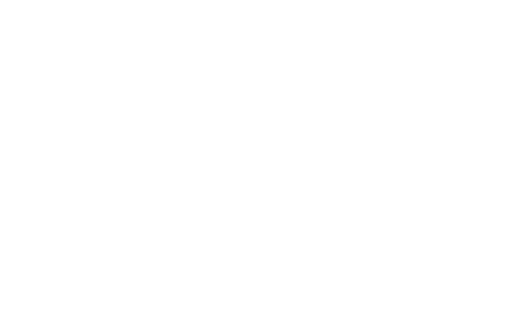 AWARD WINNER Best Live Action Under 15 Minutes - Reel Shorts Film Festival - 2019 (1).png