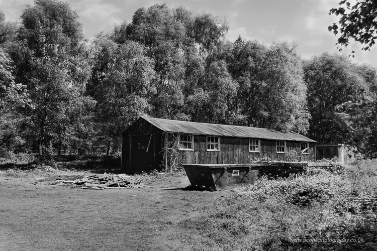 The Old Shed-.jpg