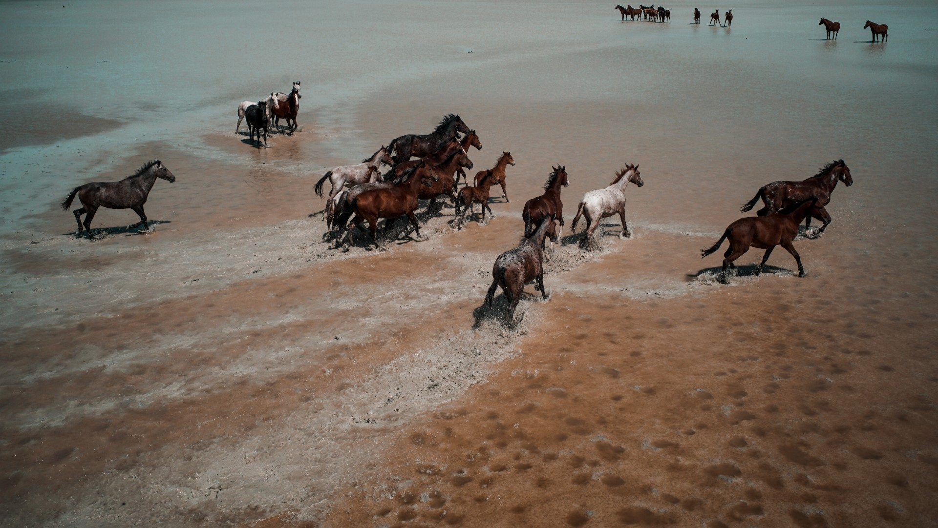 Botswana 020.jpg