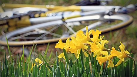 springcycling.jpg
