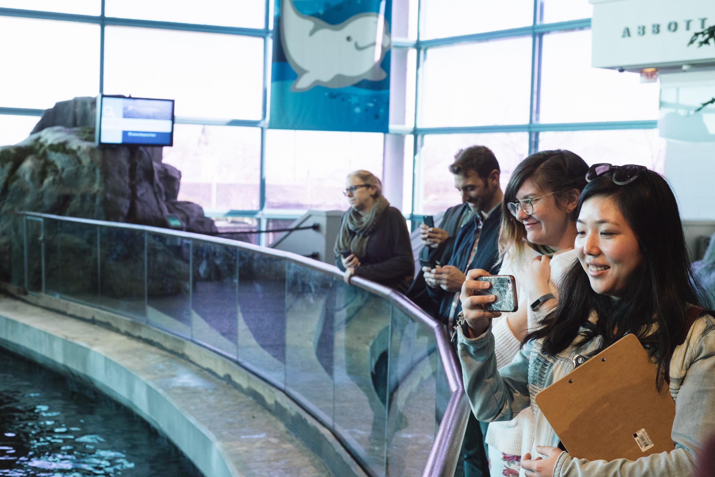 Shedd Aquarium Tour