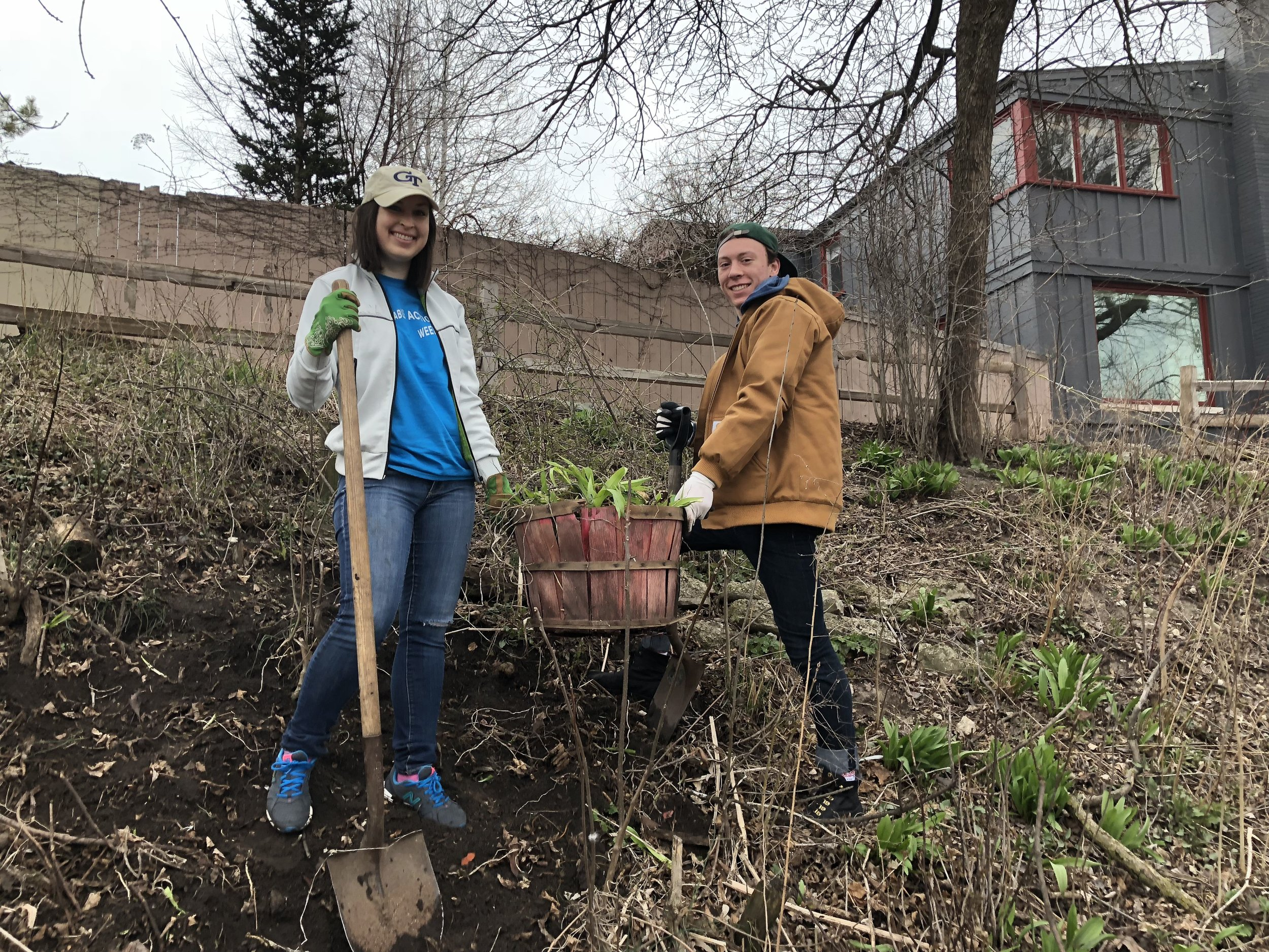 Volunteers remove invasive plants from the Horner Park riverbank