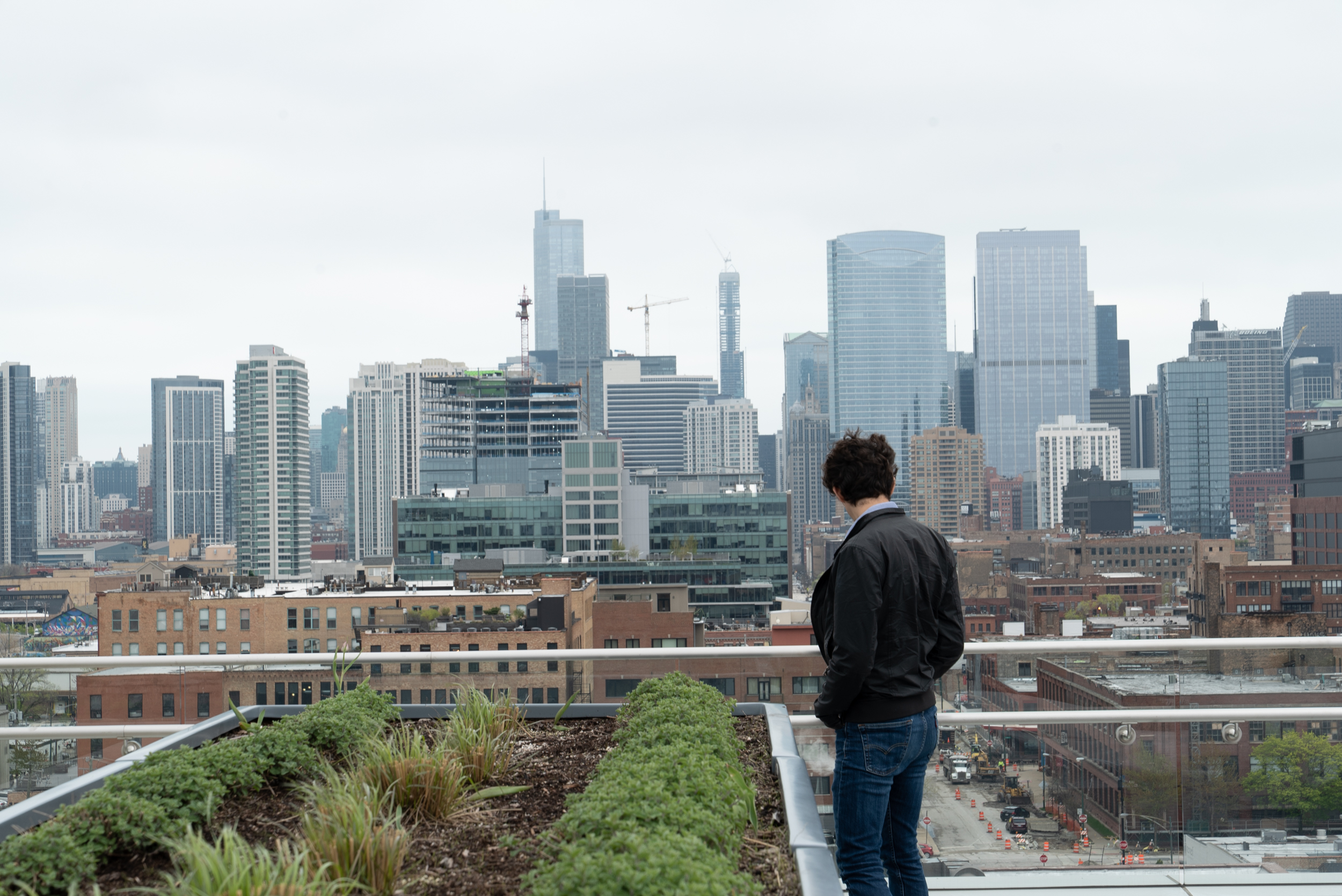 Zach looks out at the Chicago skyline from the green roof at 1330 Fulton.