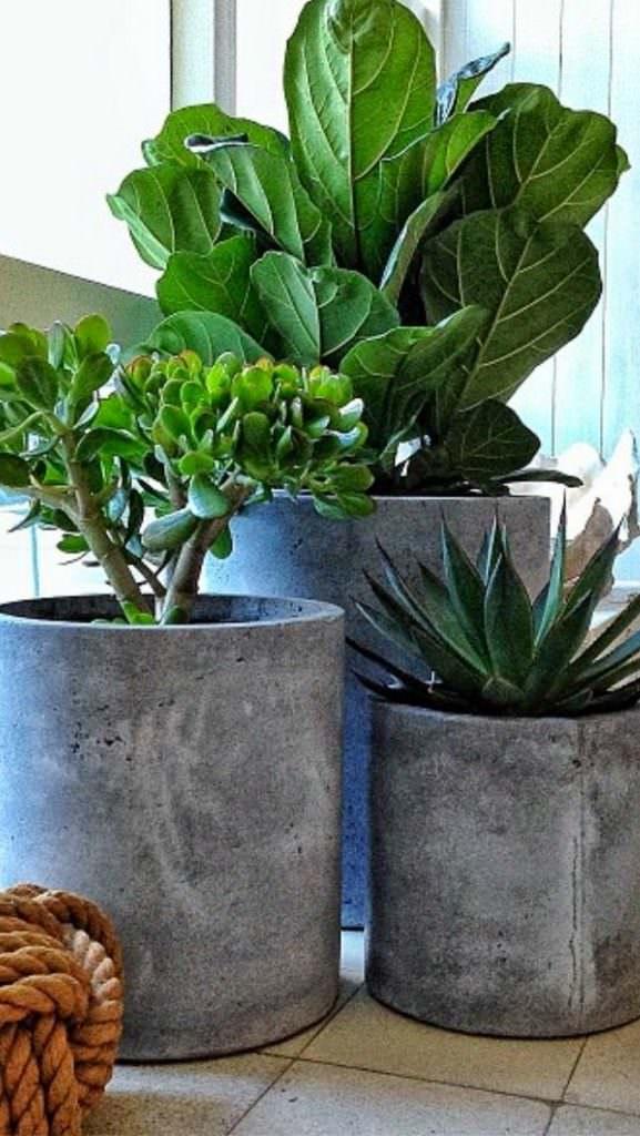 DIY-Concrete-Planters-06.jpg