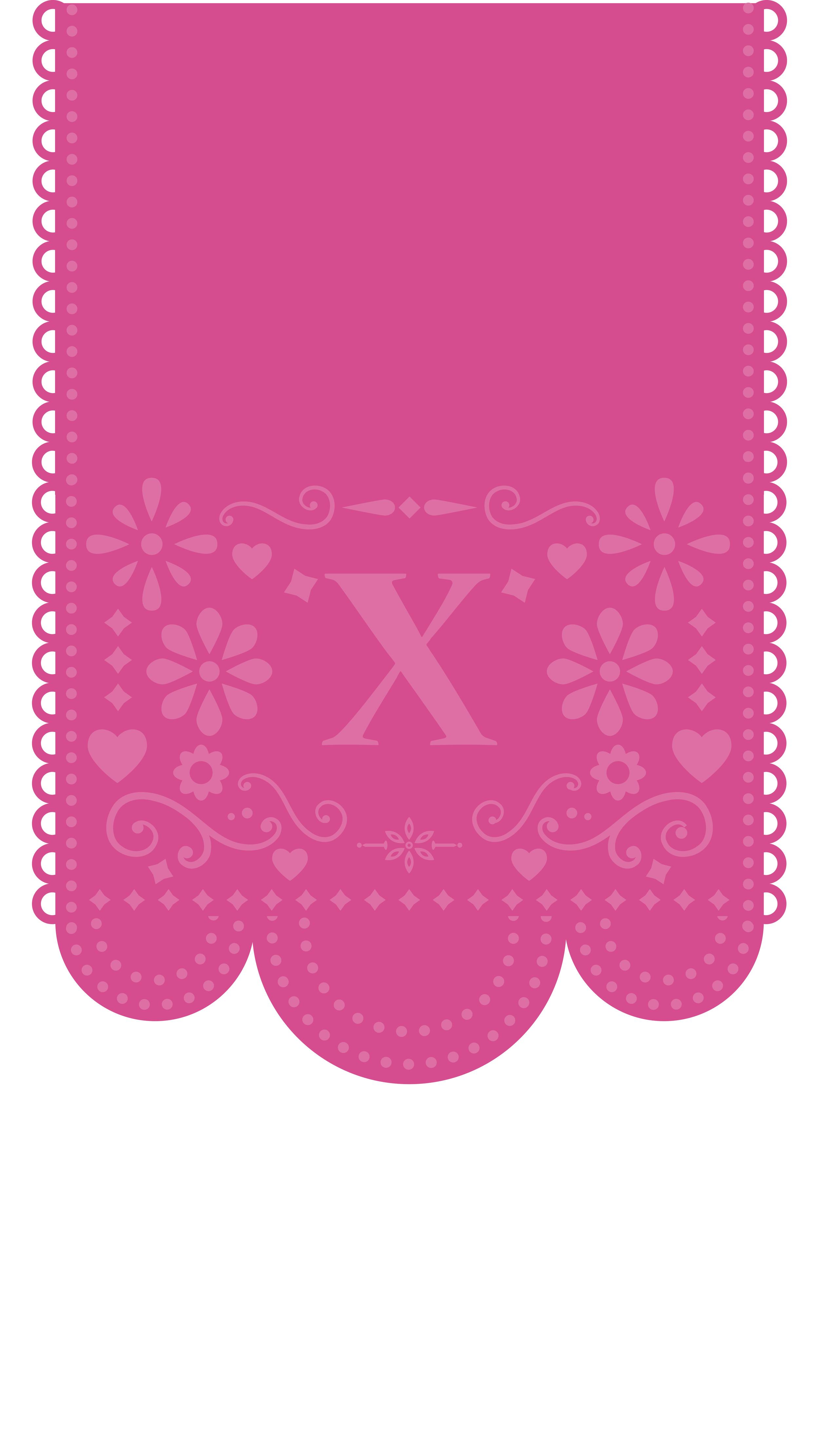 x-fiesta-banner.png