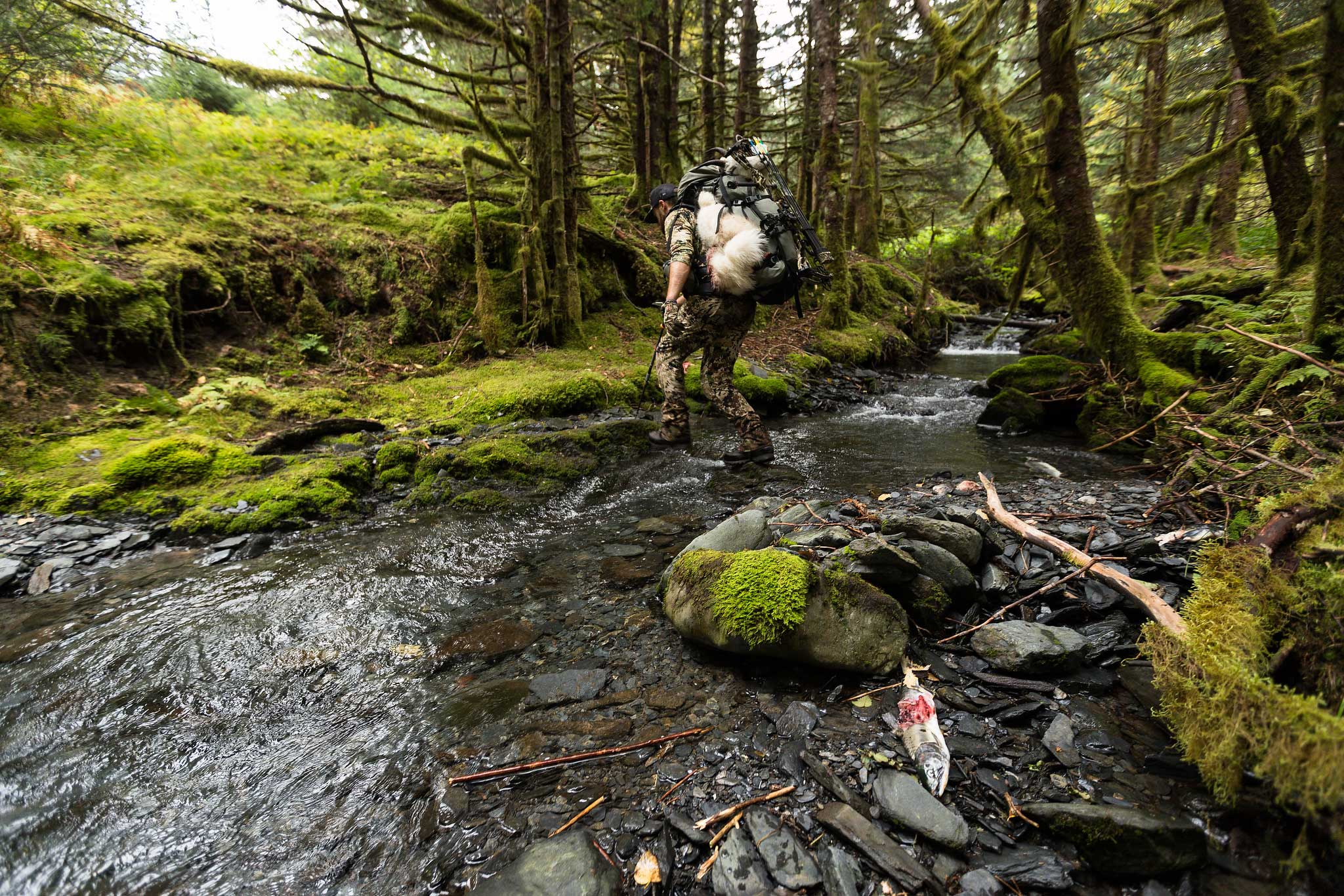 Our Land by Brad Christian on Modern Huntsman