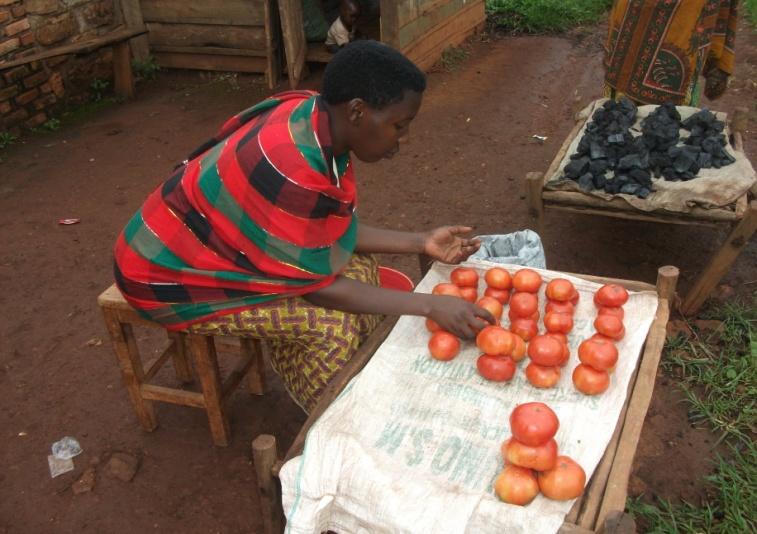 Microenterprise development in rural Burundi