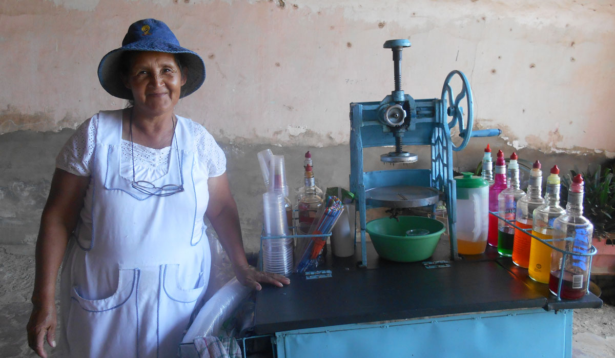 Economic empowerment of women through financial services and business development.